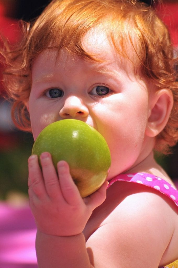 toddler healthy eating tips