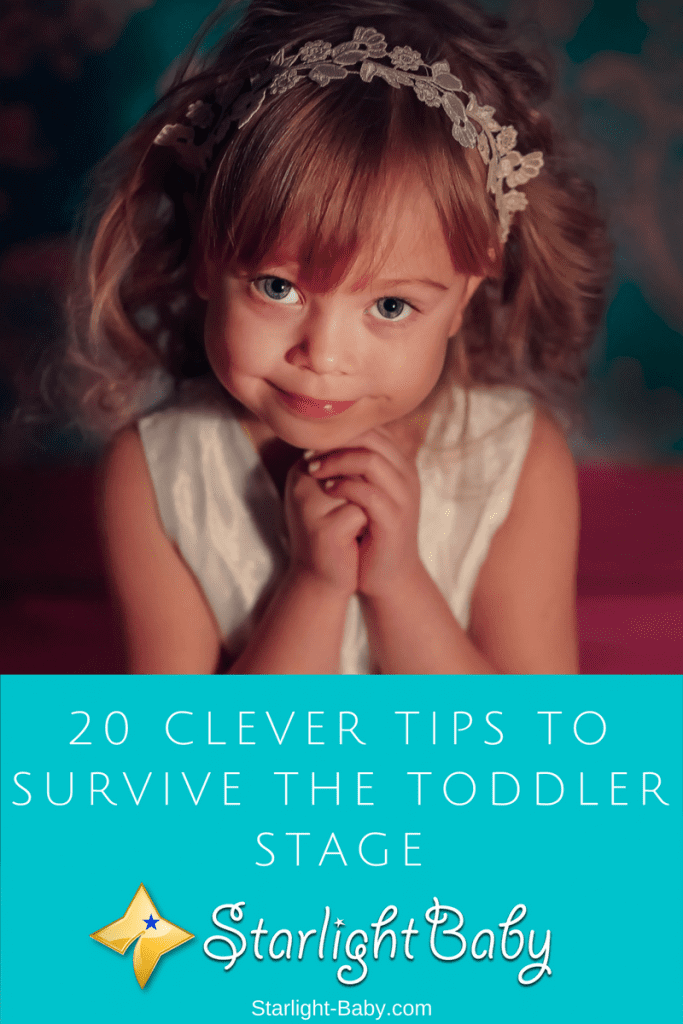 20 Clever Tips To Survive The Toddler Stage