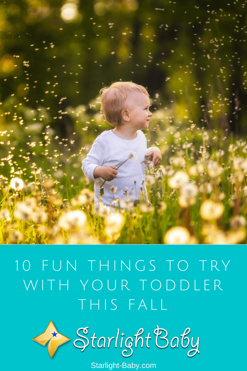 10 Fun Things To Try With Your Toddler This Fall